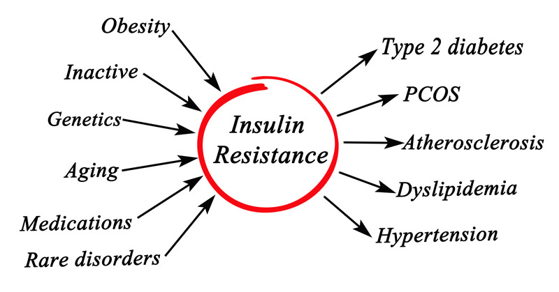infographic insulin resistance 2